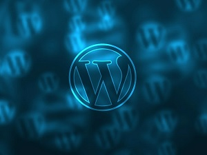 WordPress Loginizer Plugin has Automatically Updated Due To Vulnerability