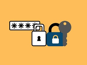 Google New Feature Targets Compromised Passwords